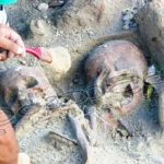 Skeletal remains in Mannar mass grave to USA